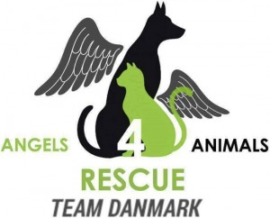 angels4animalslogo-550x443pc