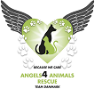 Angels4 Animals Rescue – Team Danmark